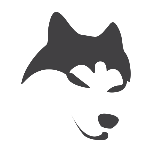 Meet Magento Poland Snow Dog