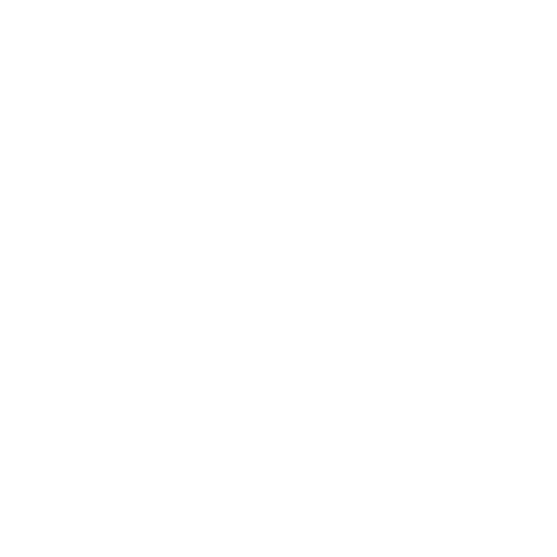 White Firefox Icon