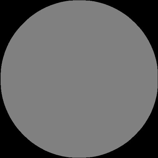 Gray Circle Icon