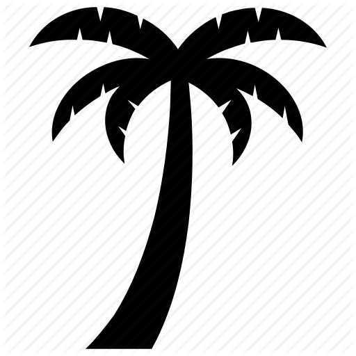 Coconut Tree, Palm Specie, Pinophyta Tree, Tree, Tropical Tree Icon