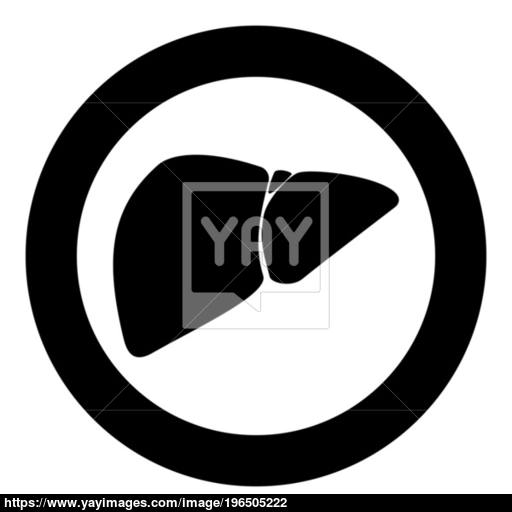 Liver The Black Color Icon In Circle Or Round Vector
