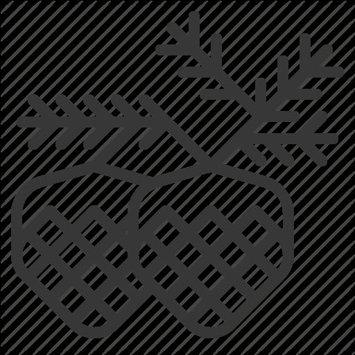 Conifer Cone, Pinecone, Season, Winter, Xmas Icon