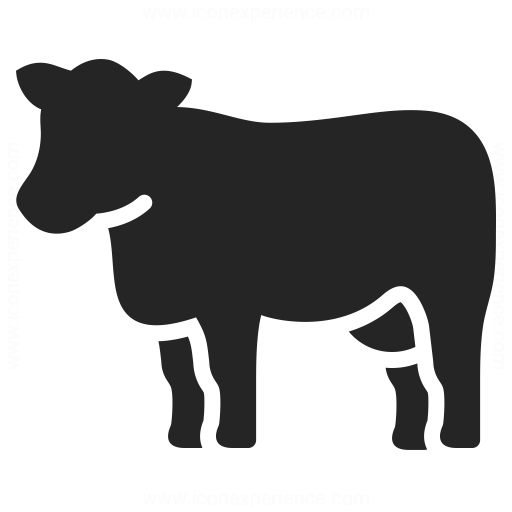 Cow Icon Iconexperience