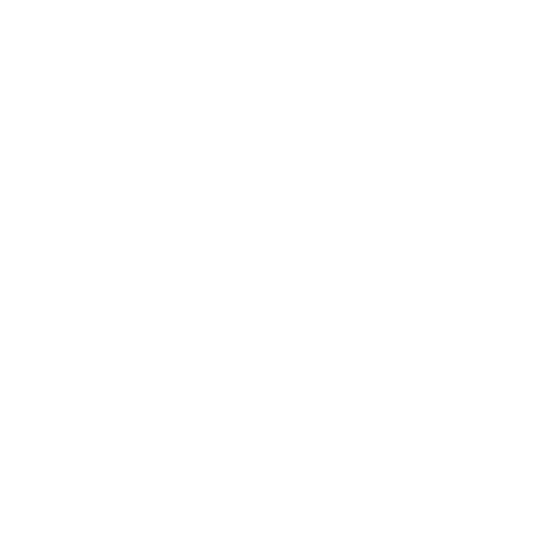 White Css Icon