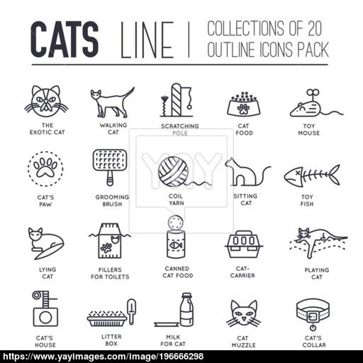 Vector Thin Line Breed Cats Icons Set Cute Outline Animal