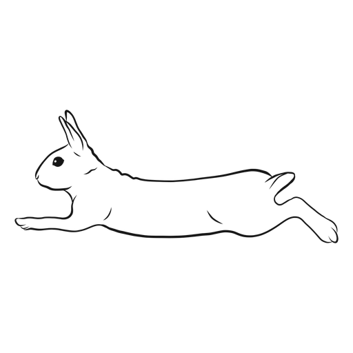 Rabbit Run Sketch