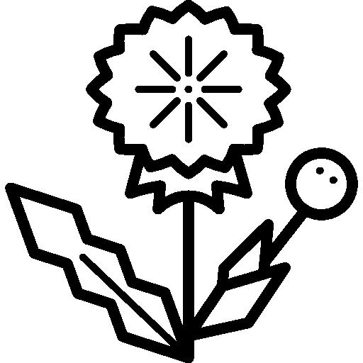 Dandelion Icons Free Download