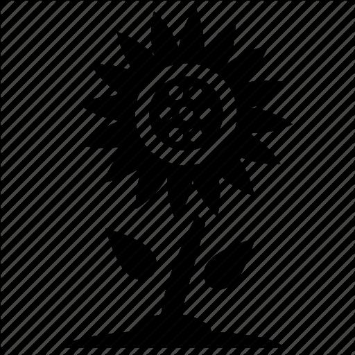 Coneflower, Dandelion, Goldenrod, Sunflower, Sunflower Plant Icon