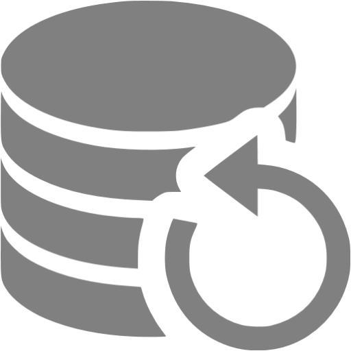 Gray Data Backup Icon