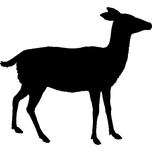 Deer Shape Icons Free Download