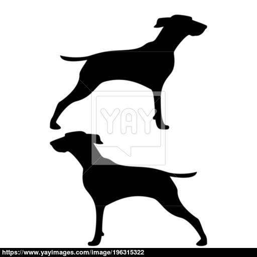 Hunter Dog Or Gundog Icon Black Color Illustration Flat Style