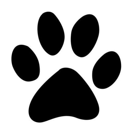 My Balanced Dog Training Wellness, Kamloops Bc