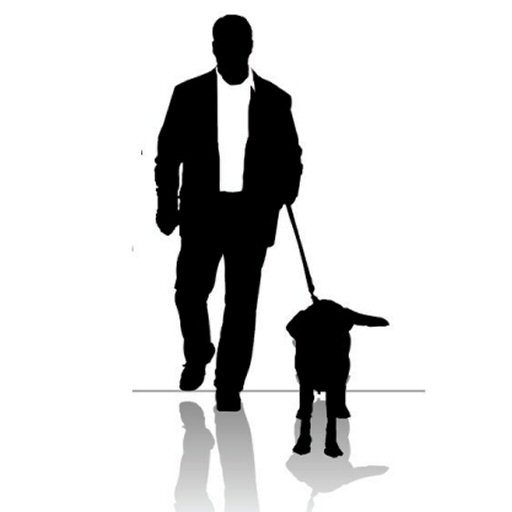 I'll Walk Your Dogs Sarasota Dog Walker Pet Sitting