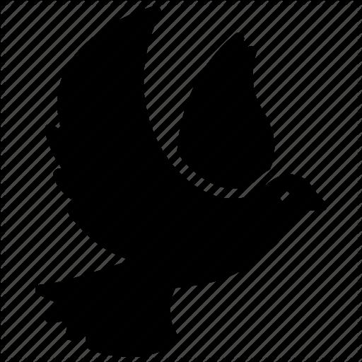 Bird, Holy Spirit, Peace Dove, Religious Bird, Religious Spirit