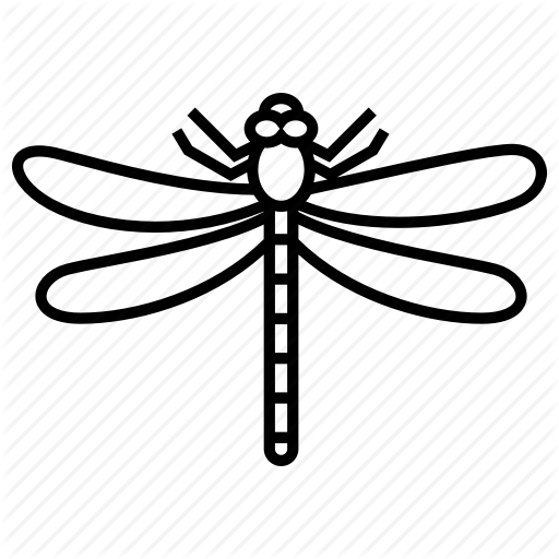 Bug, Dragonfly, Insect Icon