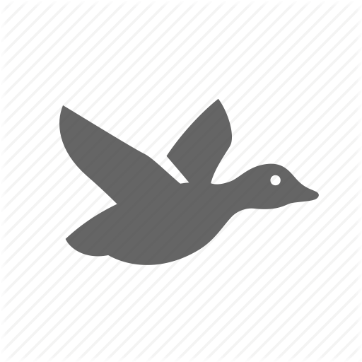 Bird, Catch, Drake, Duck, Fly, Hunting, Wild Icon
