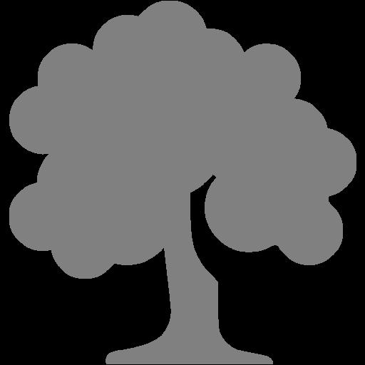 Gray Deciduous Tree Icon