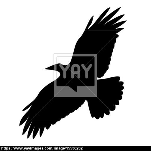 Flying Bird On White Background, Vector Illustration Image