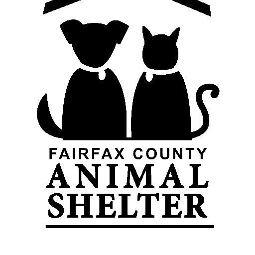 Fairfax Animals