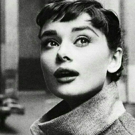 Audrey's Audrey Hepburn
