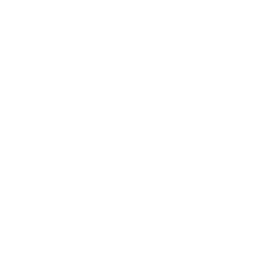 White Excel Icon
