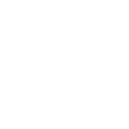 White Internet Explorer Icon