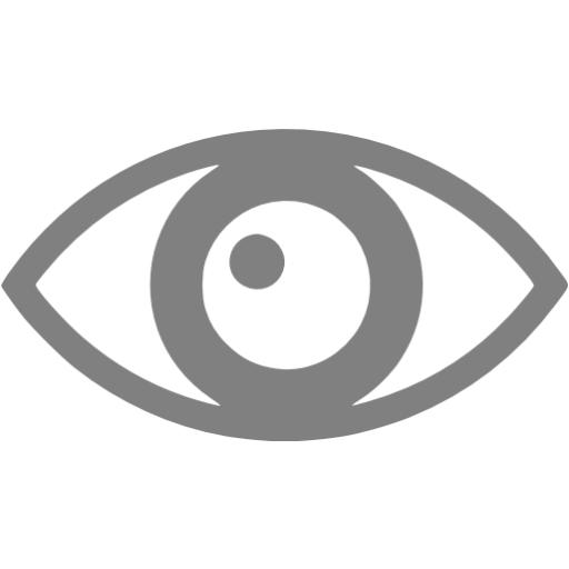 Gray Eye Icon
