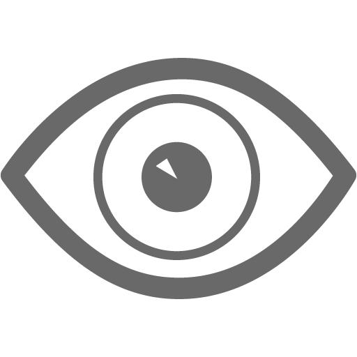 Dim Gray Eye Icon
