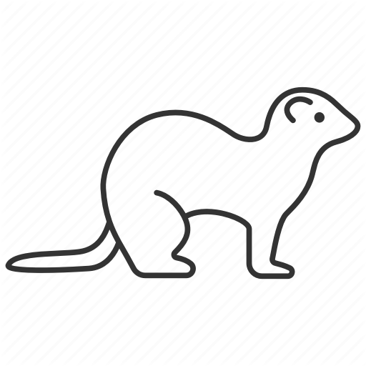 Animal, Ferret, Mustela, Pet, Polecat, Stoat, Weasel Icon