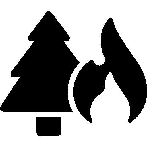 Fire Risk