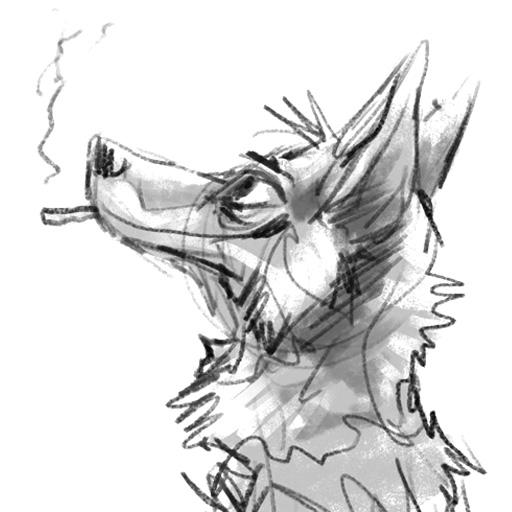 Coyote Telegram Stickers!