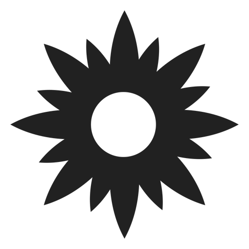 Flower Star Shaped Icon