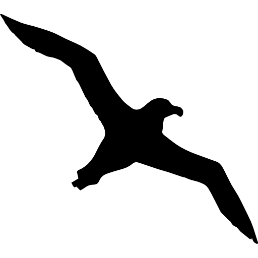 Bird Albatross Flying Shape Icons Free Download