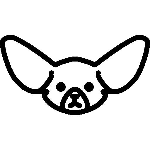 Fennec Fox Head