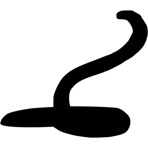 Black Snake Icon