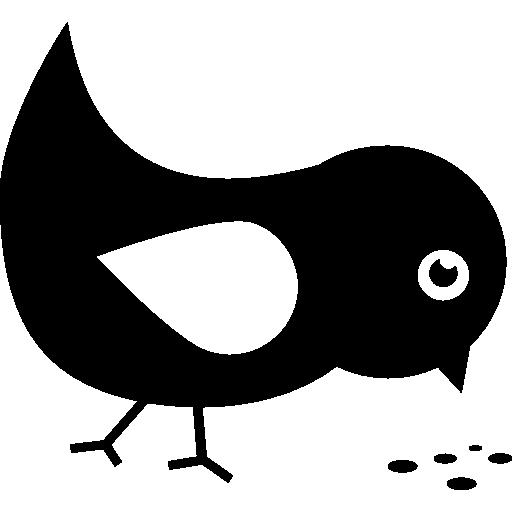 Bird Eating Seeds