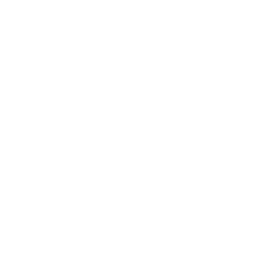 White Cruise Ship Icon
