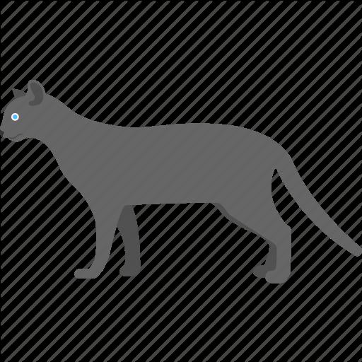 Black Face, Dreadful Object, Evil Cat, Halloween Cat, Horrible Cat