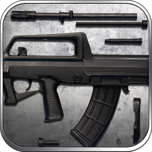 Qbz Automatic Rifle, Simulator, Trivia Shooting Game