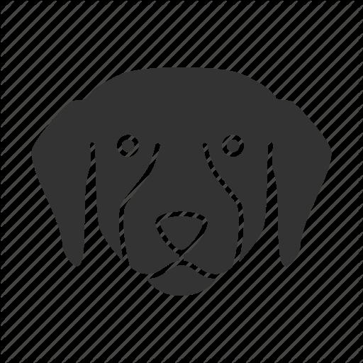 Breed, Dog, Doggy, Labrador, Pet, Puppy, Retriever Icon
