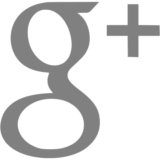 Gray Google Plus Icon