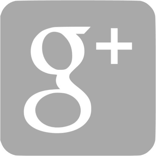 Dark Gray Google Plus Icon