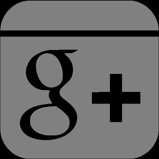 Gray Google Plus Icon