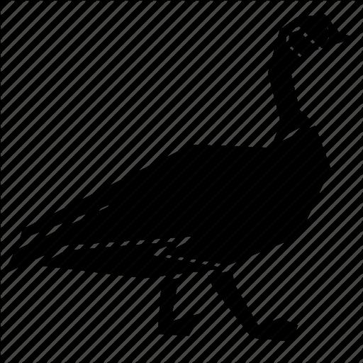 Animal, Canada Goose Icon