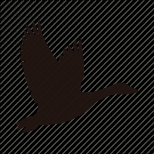 Bird, Flying, Goose, Zoo Icon