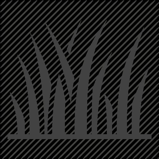 Grass, Lawn, Plant Icon