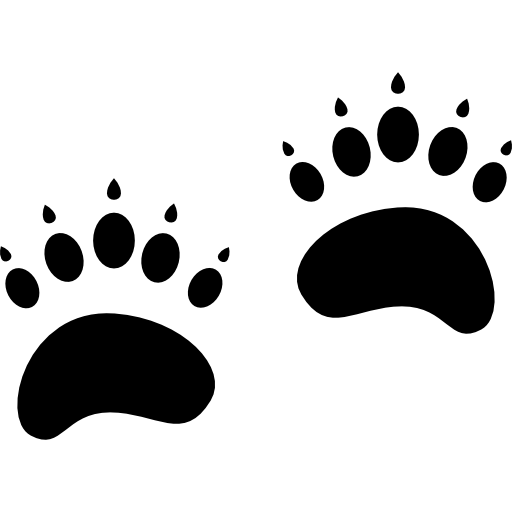 Grizzly Bear Footprints Icons Free Download