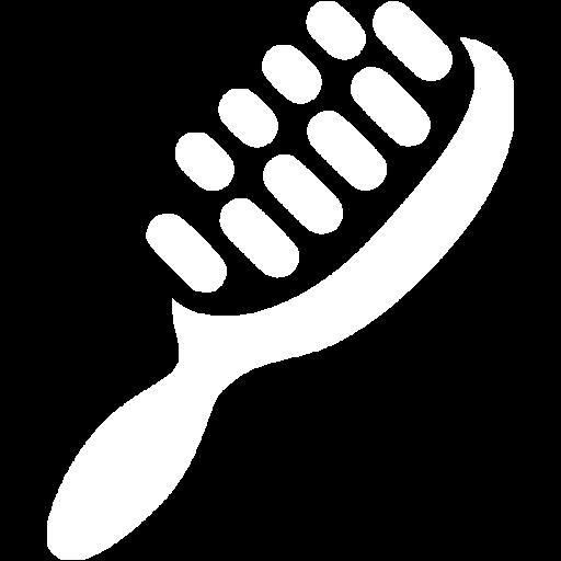 White Hair Brush Icon