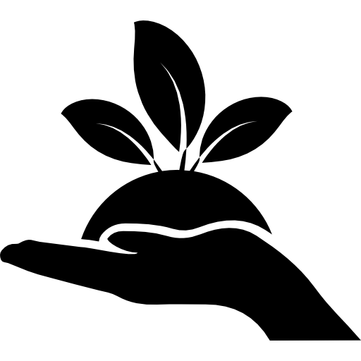 Plant Leaves On A Hand Icons Free Download
