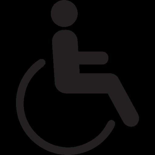 Accessible, Disable, Disability, Disabled, Person, Handicap
